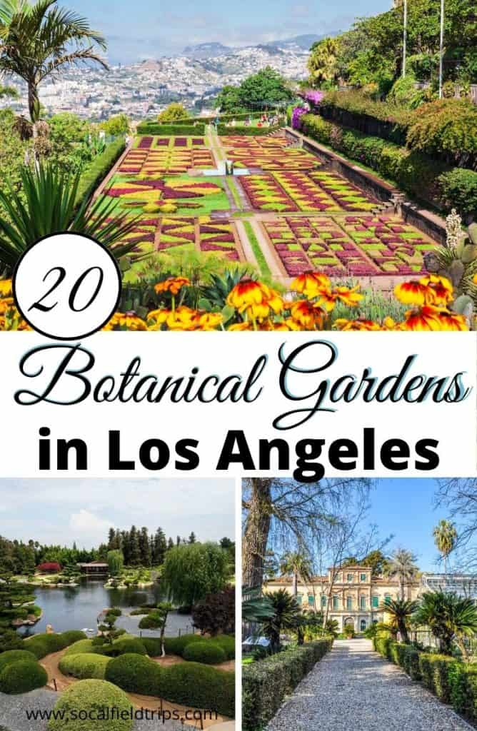 One of the great joys of visiting Los Angeles is that there is access to an exorbitant amount of entertainment and activities, especially in the context of art and culture. But we are also extremely fortunate that LA boasts an impressive array of gardens and green spaces for locals and visitors to explore. Below is a list some of the best Botanical Gardens near Los Angeles, along with a few lessor known spots that are definitely worth checking out.