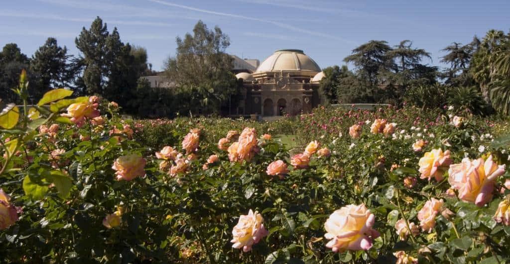Botanical Gardens in LA