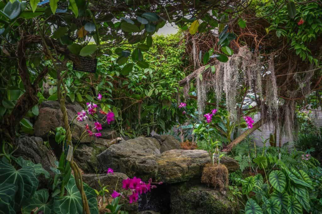Botanical Gardens near Los Angeles