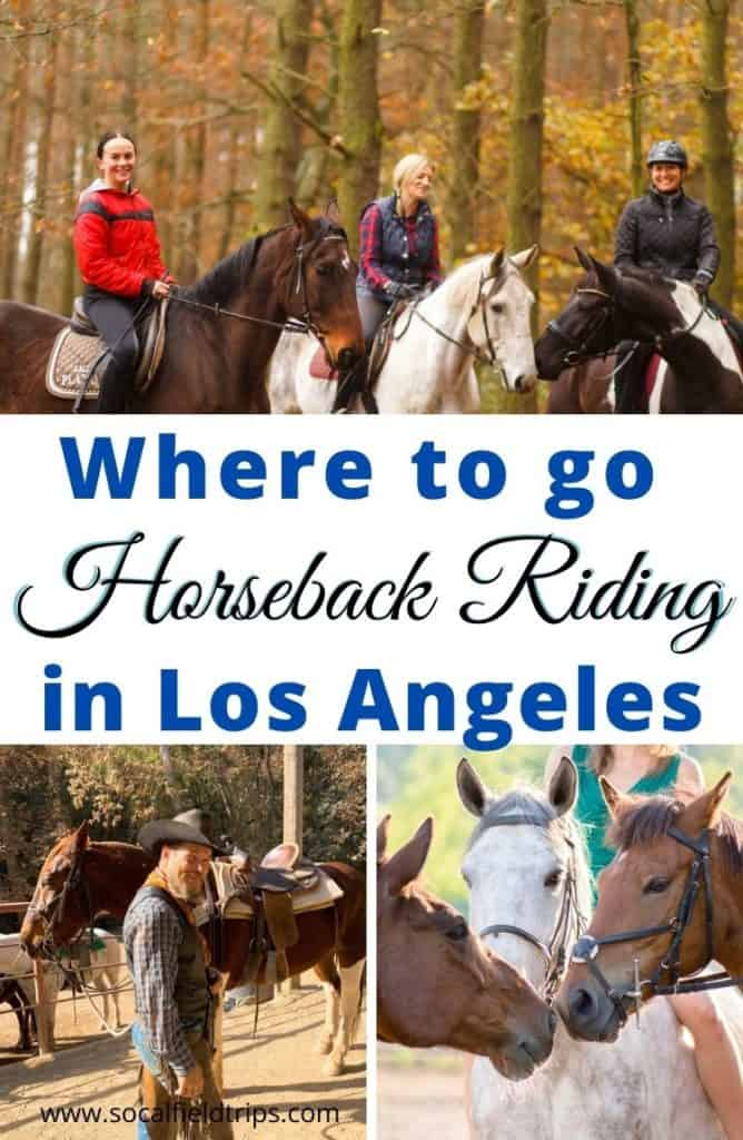 There are numerous horse ranches in and around Los Angeles that provide guided trail rides and horse rentals. So, check out this list of where to go horseback riding in Los Angeles!