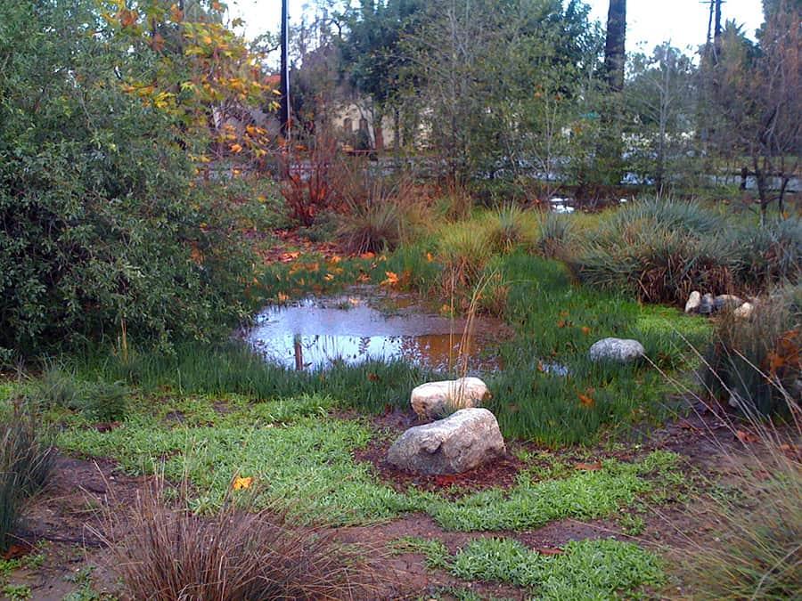 Gardens in Pasadena