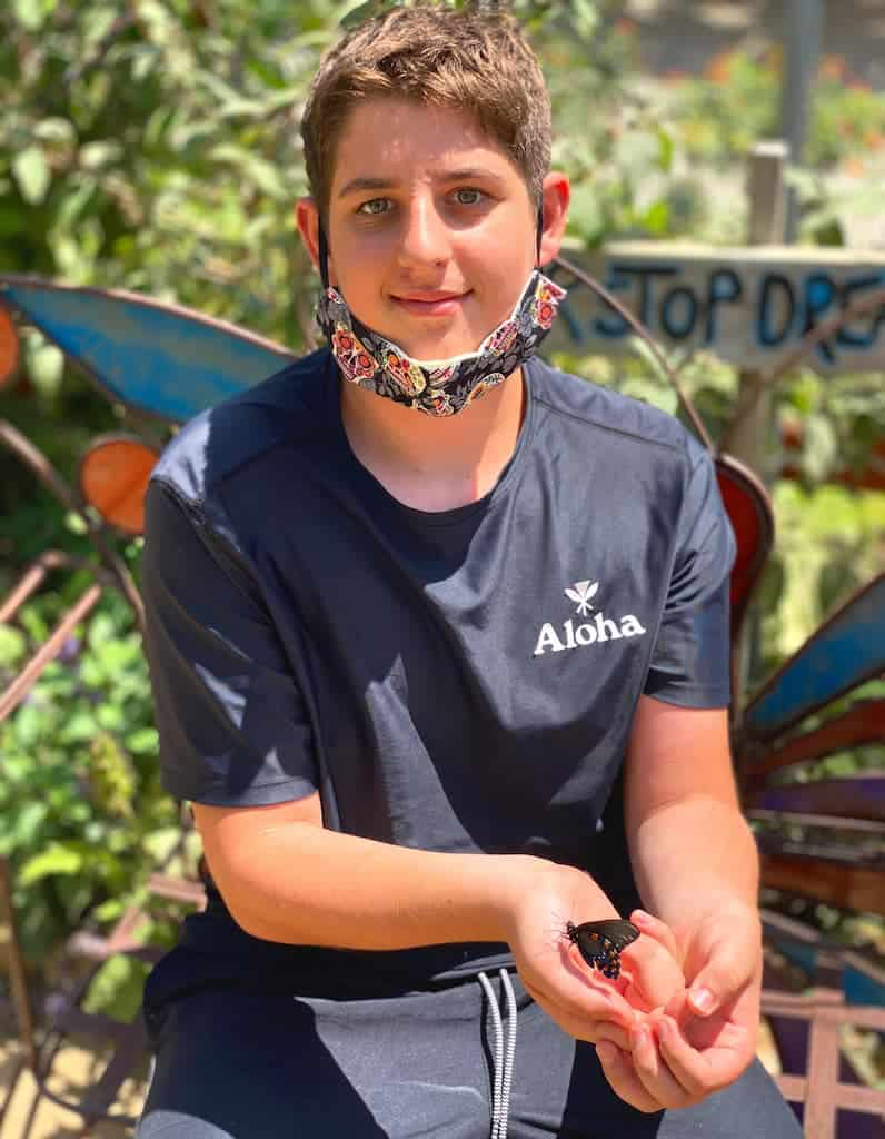 Boy holding butterflies in San Diego