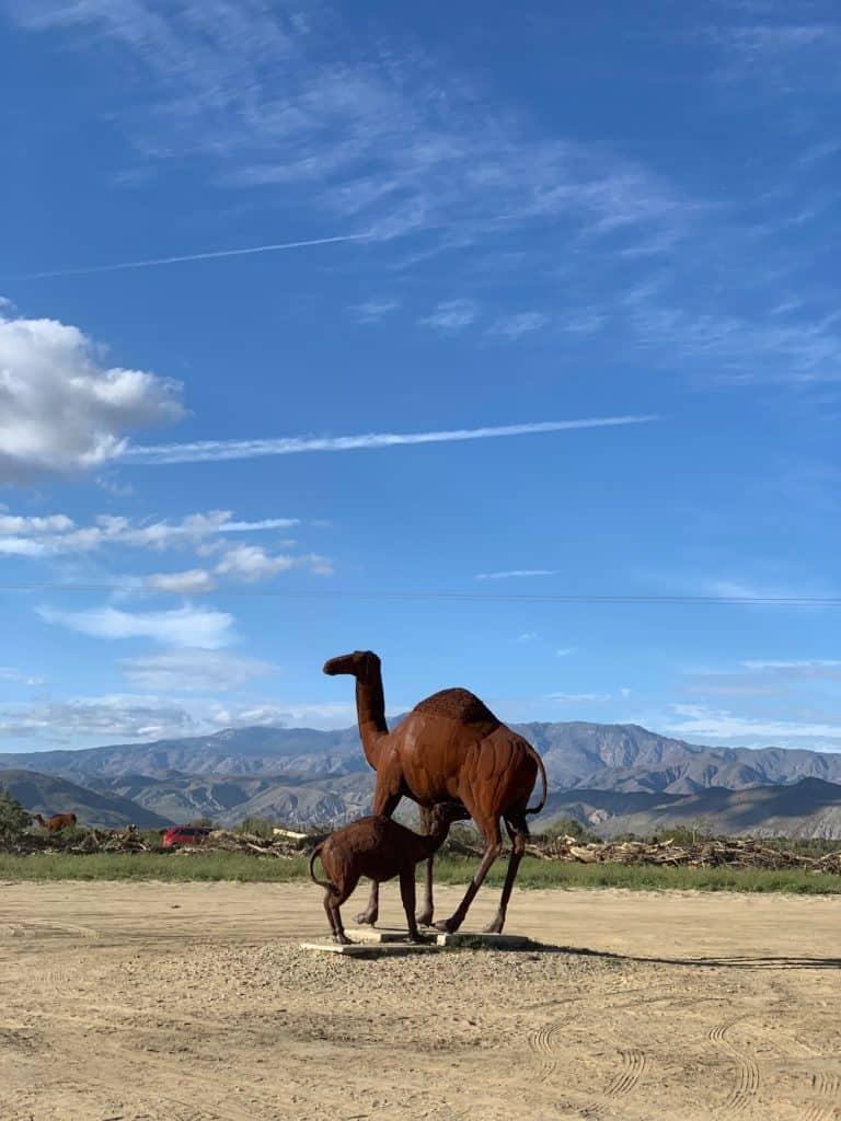 Camel Metal Sculpture Anza Borrego Springs Desert