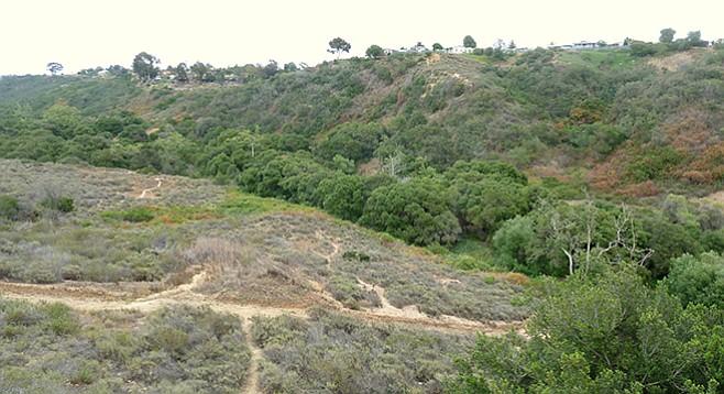 Hiking at Tecolote Canyon Natural Park and Nature Center