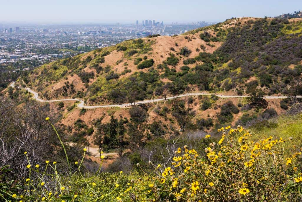 Best Hikes in Los Angeles