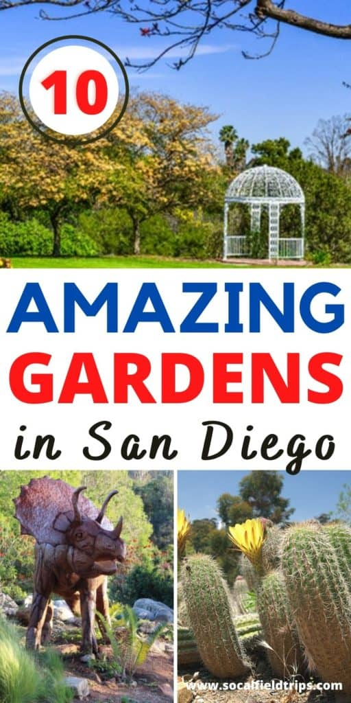 When you think of San Diego, many people automatically dream of heading to the beach and enjoying time in the sun and water. However, San Diego is home to amazing botanical gardens that invite people of all ages to enjoy time outdoors and take in the senses and fragrances that come with strolling through fresh flowers and plant gardens. So, check out this list of the 10 Best Botanical Gardens in San Diego to visit!