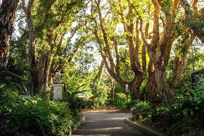 Best Botanical Gardens in San Diego