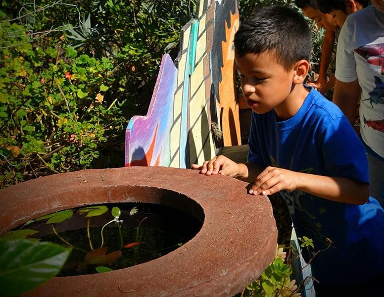 Ethnobotany Children's Peace Garden