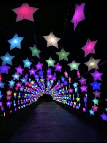 TickTickets Lightscape LA Arboretum