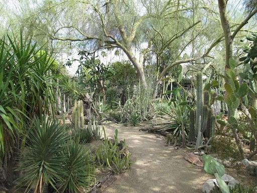 Botanical Garden in Riverside