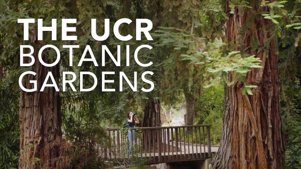 Botanical Gardens in Riverside