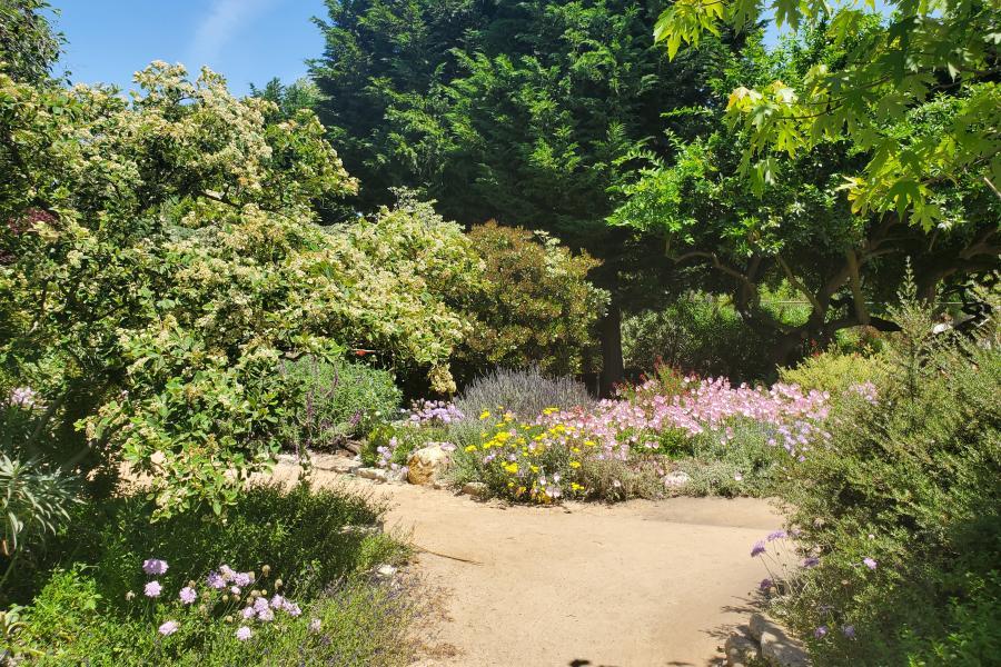 Huntington Beach Secret Garden