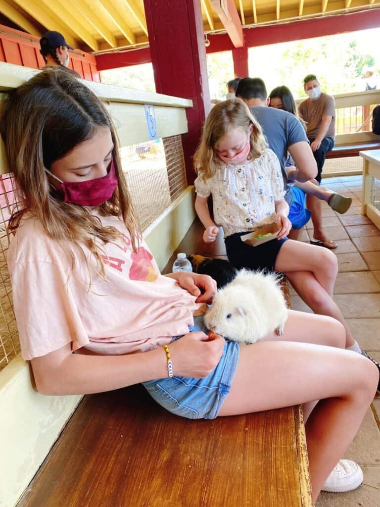 Zoomar's Petting Zoo
