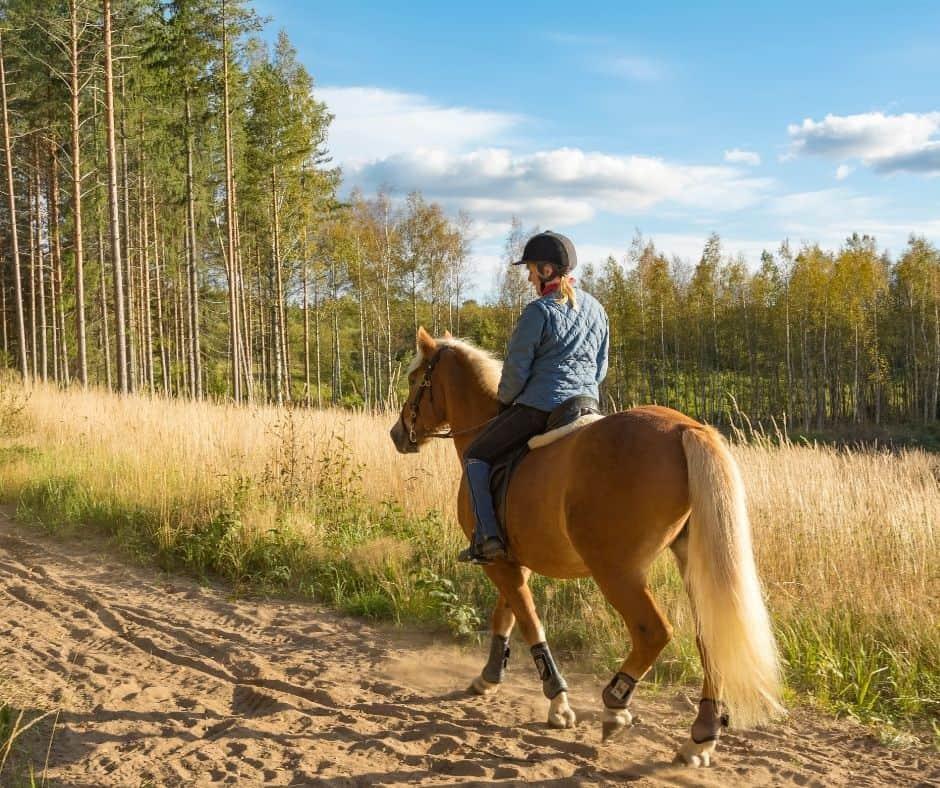 Horseback Riding in Orange County