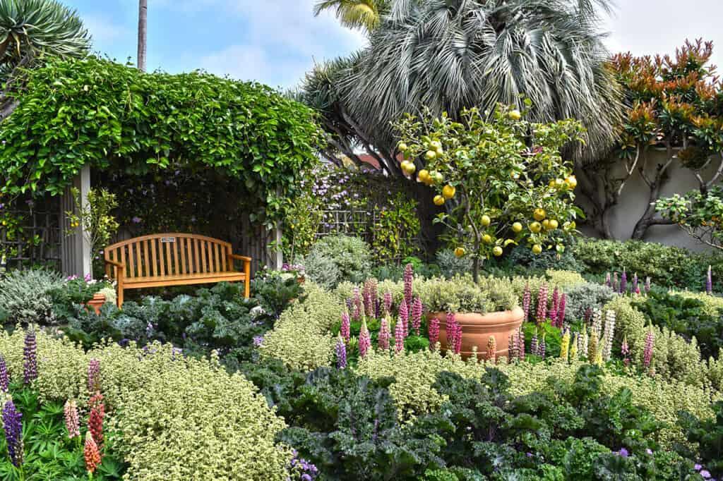 Sherman Library and Gardens in Corona Del Mar