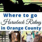 Head out to a horse stable for fun horseback riding experience. Orange County, California has a bevy of horseback riding opportunities. So here's a look at 10 outstanding locations to go horseback riding in Orange County!