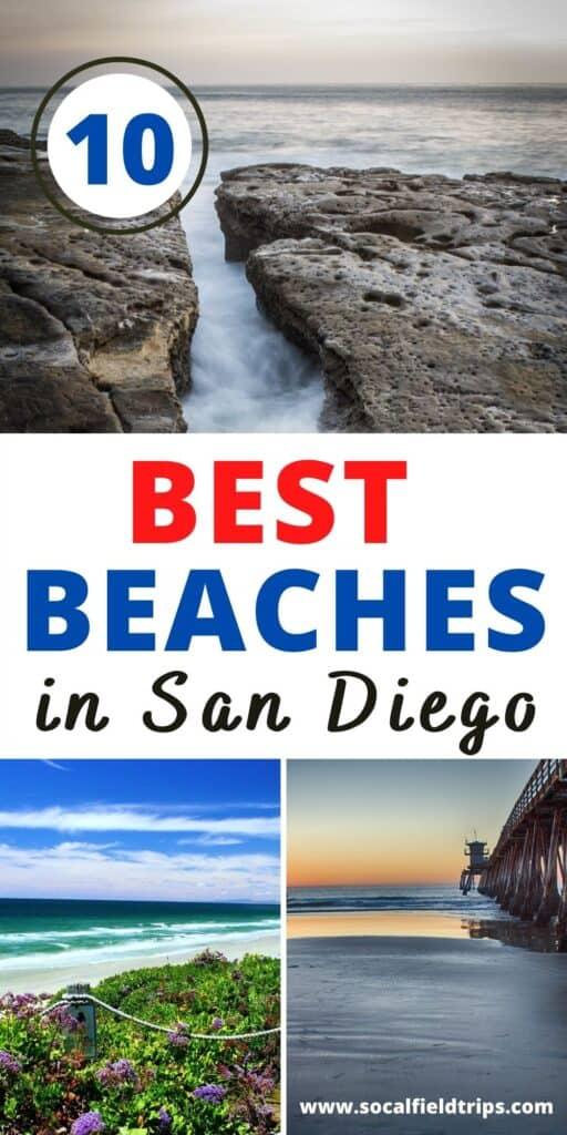 Whether you prefer sunbathing, swimming or playing volleyball, you'll find plenty to do on the sand at these 10 best beaches in San Diego.